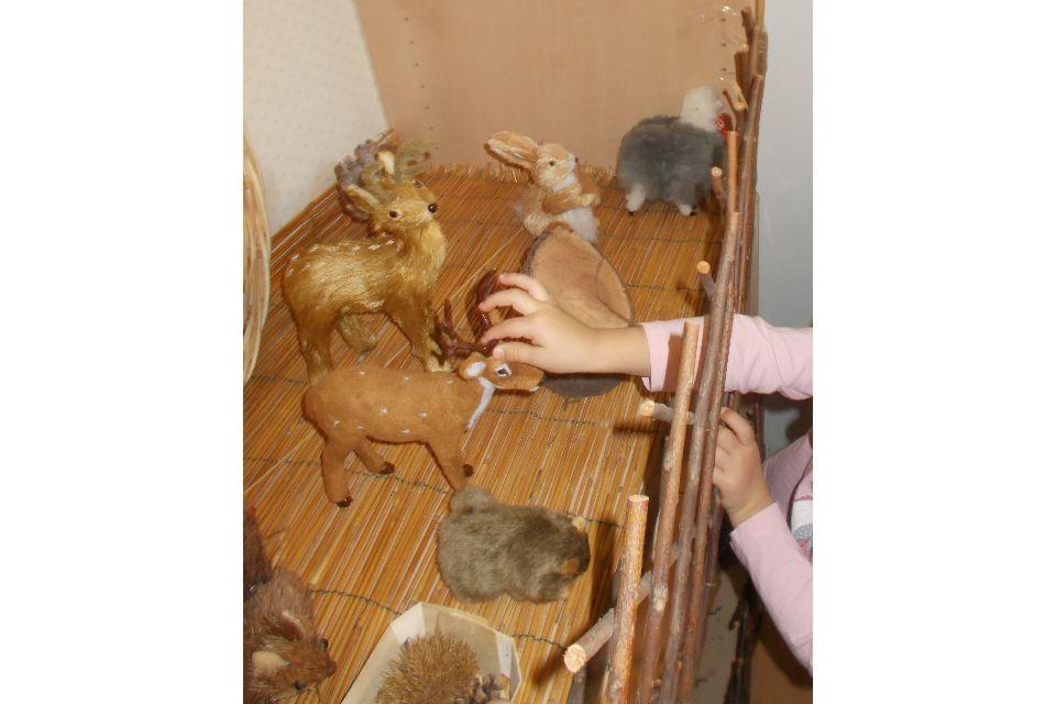 L'odore del legno, il rumore del sasso, la leggerezza del riccio - Immagine: 2